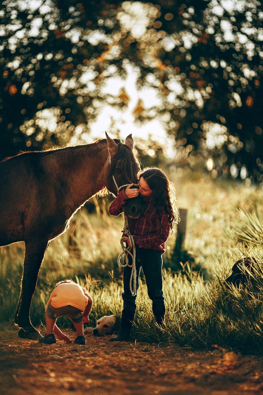little girl kissing horse in pasture